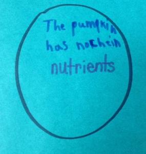 Pumpkin Prediction Learning Center
