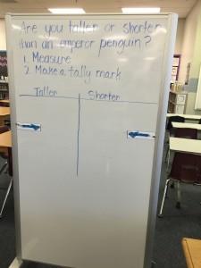 penguin measurement center