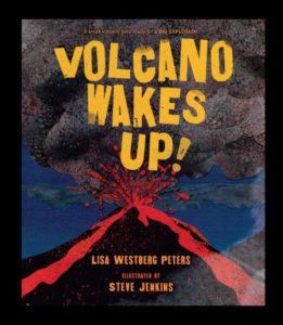 Volcano Poetry Book